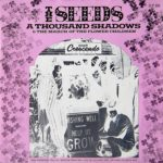seeds-thousand-shadows-pink-picture-sleeve