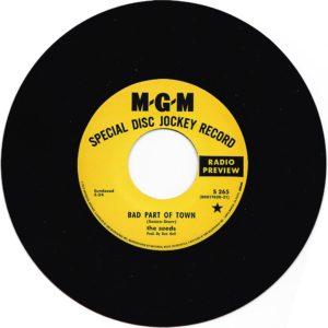 Sundazed-Bad-Part-of-Town-vinyl